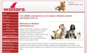 Wadars Animal Rescue - Worthing