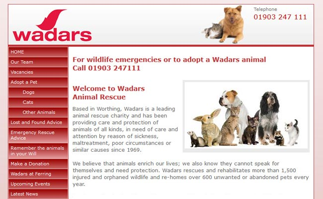 Wadars Animal Rescue - Worthing