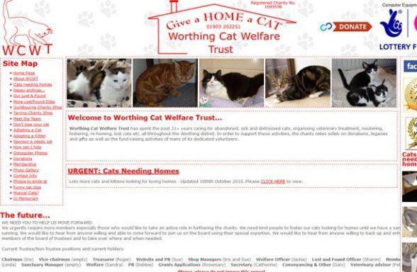 Worthing Cat Welfare Trust - Worthing