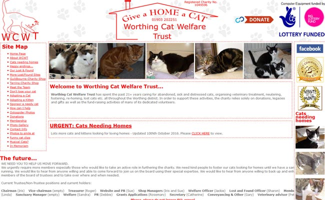 Worthing Cat Welfare Trust - Worthing