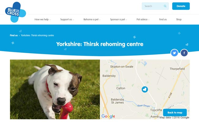 Blue Cross Rehoming Centre - Thirsk