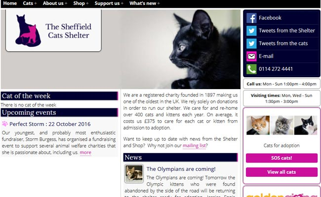 Sheffield Cat Shelter - Sheffield