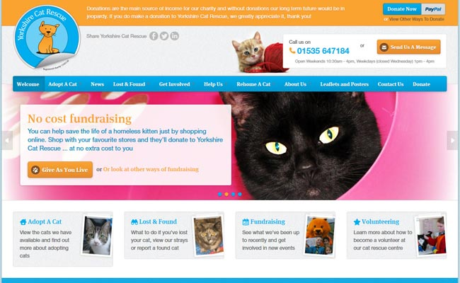 Yorkshire Cat Rescue - Keighley