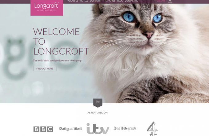 Longcroft Cattery Margate