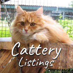 Cattery Listings